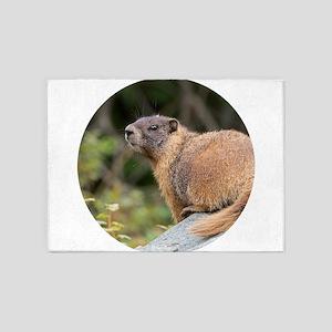 Marmot 5'x7'Area Rug
