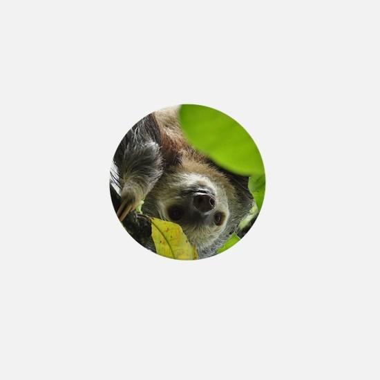Sloth_20171105_by_JAMFoto Mini Button (10 pack)