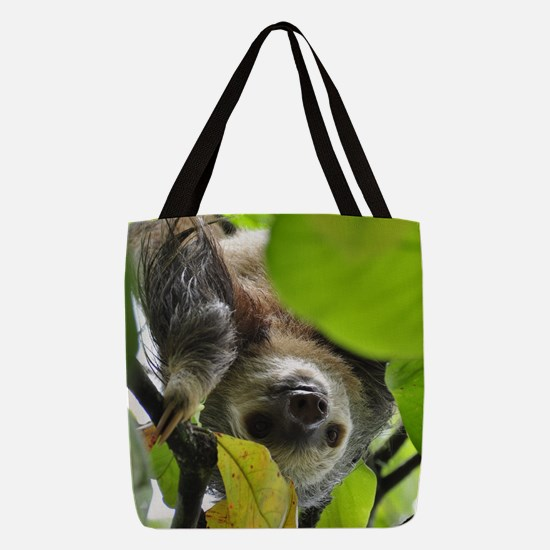 Sloth_20171105_by_JAMFoto Polyester Tote Bag