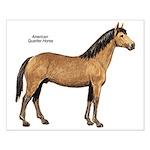 American Quarter Horse Small Poster