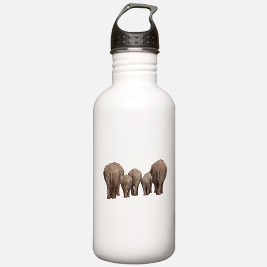 Cute Mother elephant and baby elephant Water Bottle