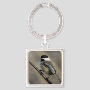 Chickadee Bird Keychains