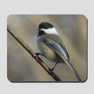 Chickadee Bird Mousepad
