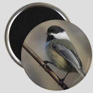 Chickadee Bird Magnets