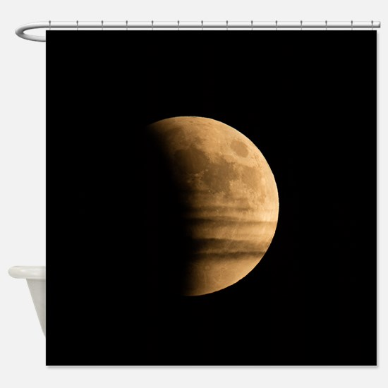 Unique Lunar Shower Curtain