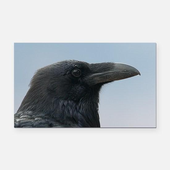 Cute Raven bird Rectangle Car Magnet