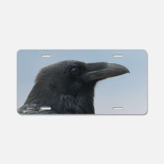 Cute Intelligent Aluminum License Plate