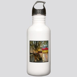 Your Carriage Awaits Stainless Water Bottle 1.0L