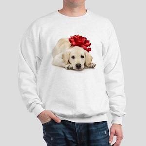 Yellow Lab Puppy Sweatshirt