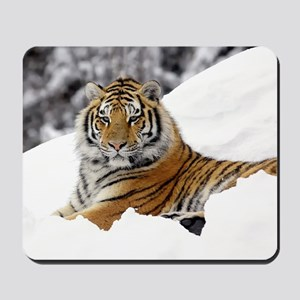 Tiger In Snow Mousepad