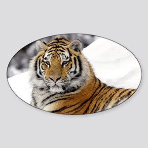 Tiger In Snow Sticker