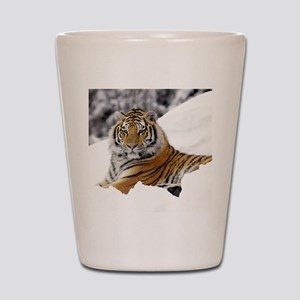 Tiger In Snow Shot Glass