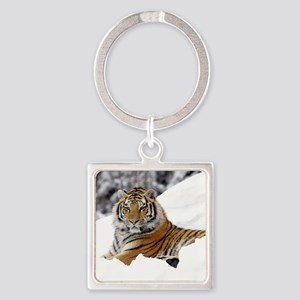 Tiger In Snow Keychains