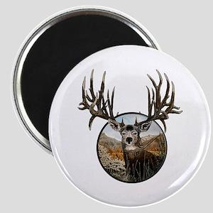 Big big buck Magnet
