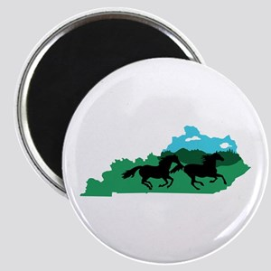 Kentucky State Magnets