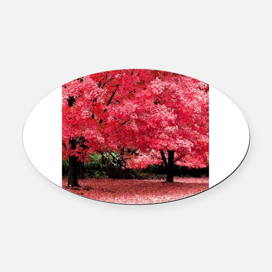Cute Under 25 Oval Car Magnet