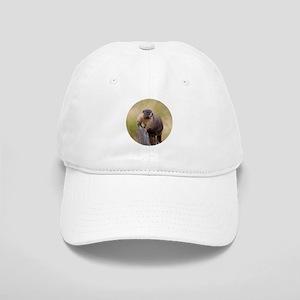 Marmot Lookout Cap