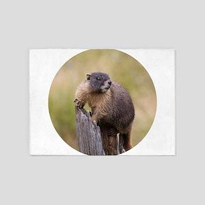 Marmot Lookout 5'x7'Area Rug