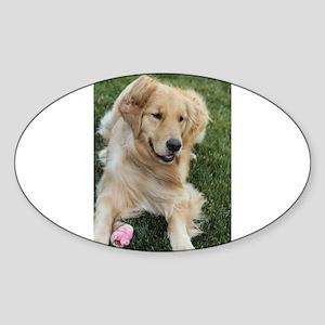 frisky golden retriver Sticker