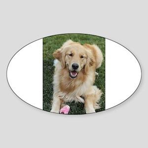 Nala the golden retroever dog Sticker