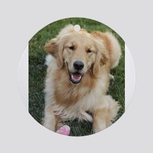Nala the golden retroever dog Round Ornament
