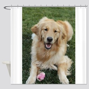 Nala the golden retroever dog Shower Curtain