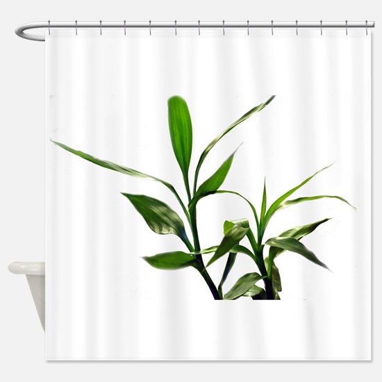 green lucky bamboo leaves. Shower Curtain