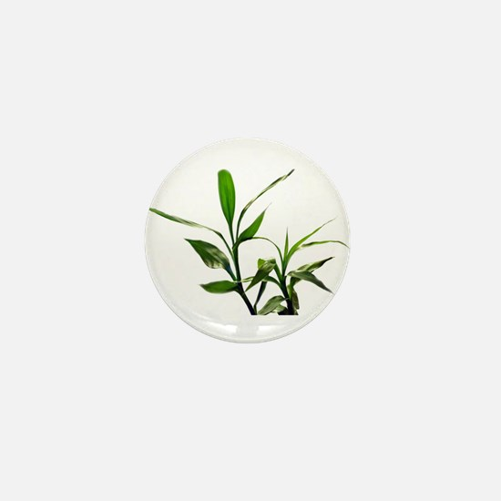 green lucky bamboo leaves. Mini Button