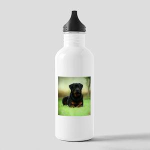 Rottweiler Sports Water Bottle