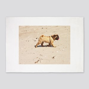 small dog pug baby playing in the s 5'x7'Area Rug