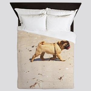 small dog pug baby playing in the summ Queen Duvet
