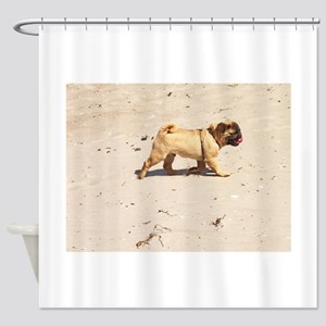 small dog pug baby playing in the s Shower Curtain