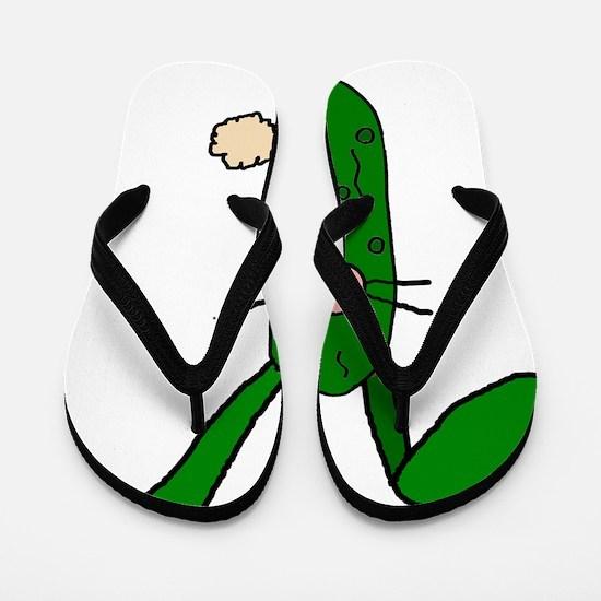 Funny Pickle Flip Flops