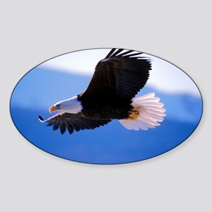 Bald Eagle flying Sticker