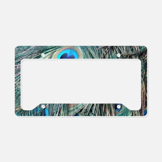 Peafowl Feathers With Big Eyes License Plate Holde