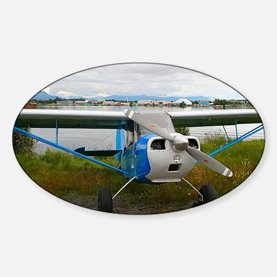 High wing aircraft, blue & white, Alas Decal