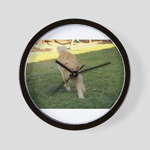 golden retriever playing Wall Clock