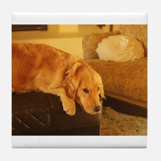 golden retriever relaxin Tile Coaster
