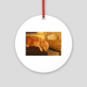golden retriever relaxin Round Ornament