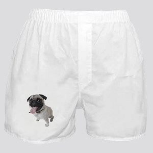 Pug Close Up Photo Boxer Shorts
