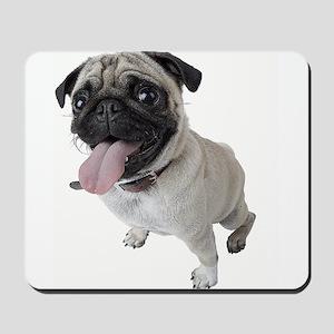 Pug Close Up Photo Mousepad