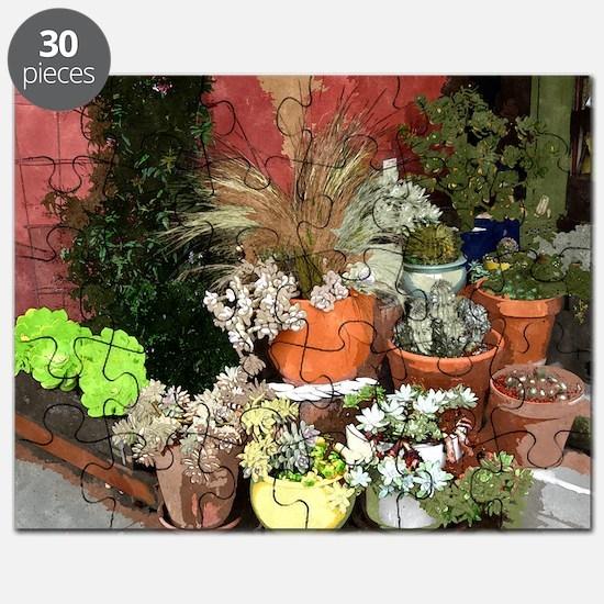 Succulent Plants Puzzle