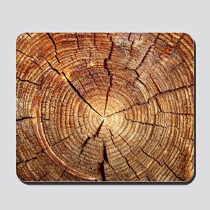 CROSS SECTION OF AN OLD TREE Mousepad