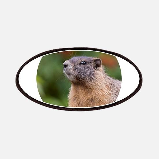 Marmot Portrait Patch