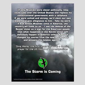 Storm Petrel 16x20 Poster 6