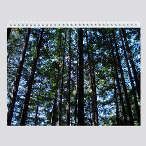 Muir Woods Wall Calendar