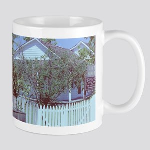 PICT0342.JPG old house with white picket fenc Mugs