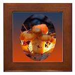 Backlit Mushroom Framed Tile