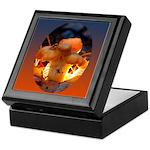 Backlit Mushroom Keepsake Box