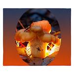 Backlit Mushroom King Duvet